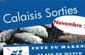 Vignette Calaisis Sorties November 2014